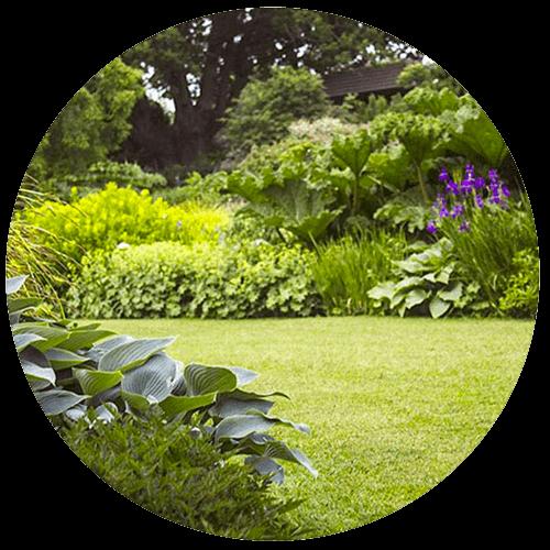 realizzazione giardini monza brianza